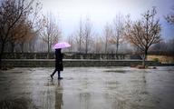 نیمه شمالی کشور سرد میشود    بارش و باد شدید در برخی مناطق