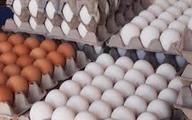 تخممرغ شانهای ۵۰ هزار تومان!