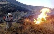 کوههای فیروزآباد در شعله های آتش سوخت