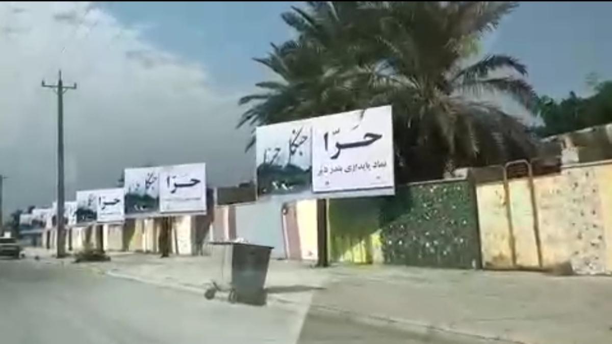 کمپین مردم بندر دیّر استان بوشهر برای نجات جنگل حرا + ویدئو