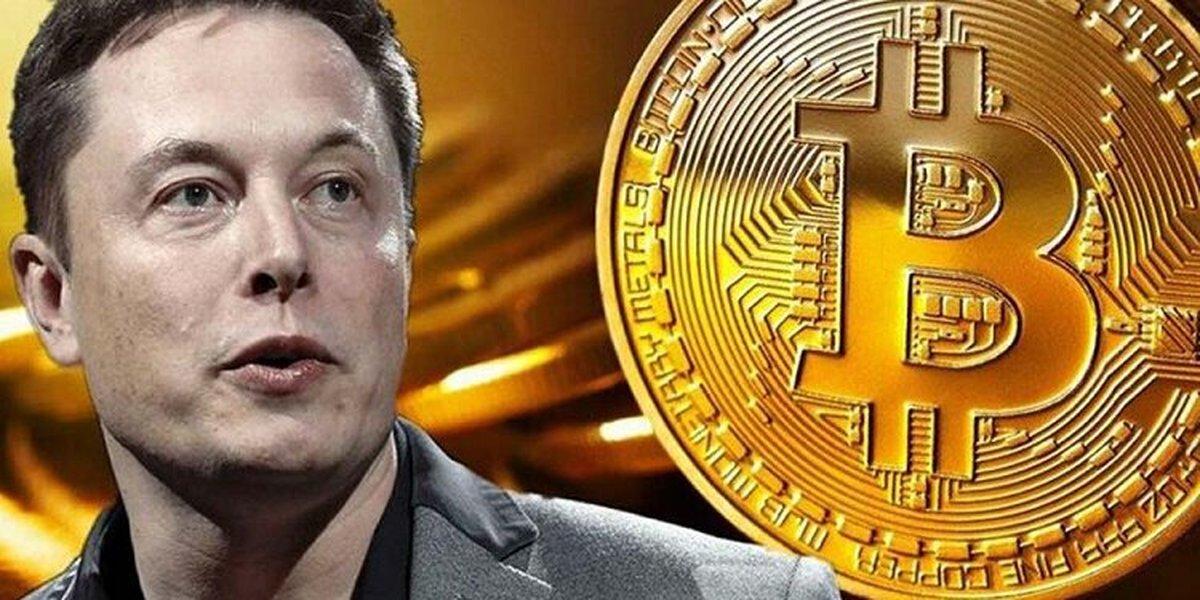 ایلان ماسک کدام رمز ارز را بیش ازبقیه ارزهای دیجیتال در اختیار دارد؟