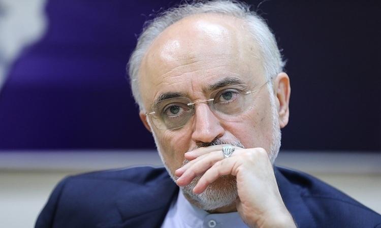 صوفی، فعال اصلاحطلب: حمایت اصلاحطلبان از علی اکبر صالحی دور از ذهن نیست