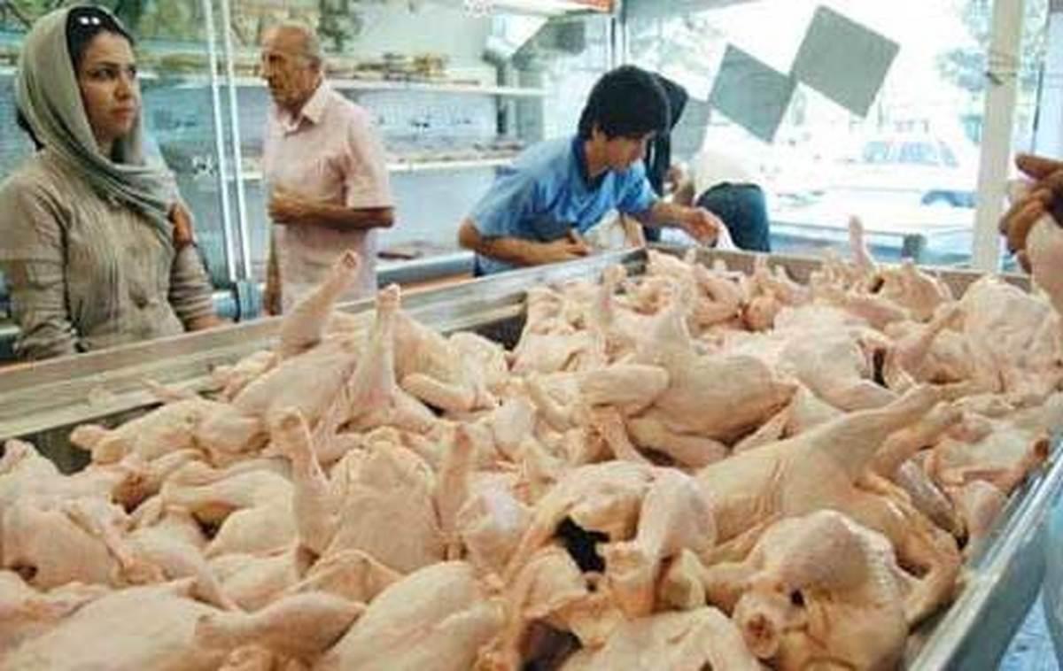 واردات مرغ از ترکیه یا برزیل  مرغ نخرید تا بازار تنظیم شود!