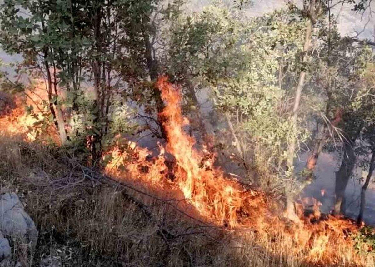 اعزام ۳ بالگرد از تهران و شیراز برای اطفای حریق جنگلهای«نارک»گچساران