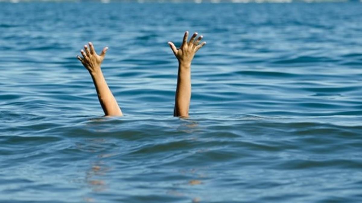 آمار مرگ ناشی در دریای مازندران افزایش یافت