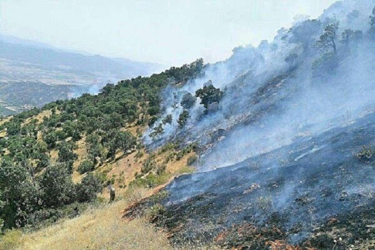 آتشسوزی |  فوت سه نفر در اثر آتشسوزی مراتع پاوه
